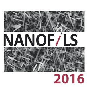Atelier Nanofils, 20-22 juin 2016