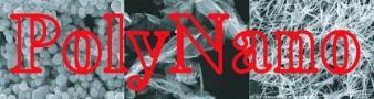 Rencontre annuelle GDR Polynano , 4-5 juillet 2016