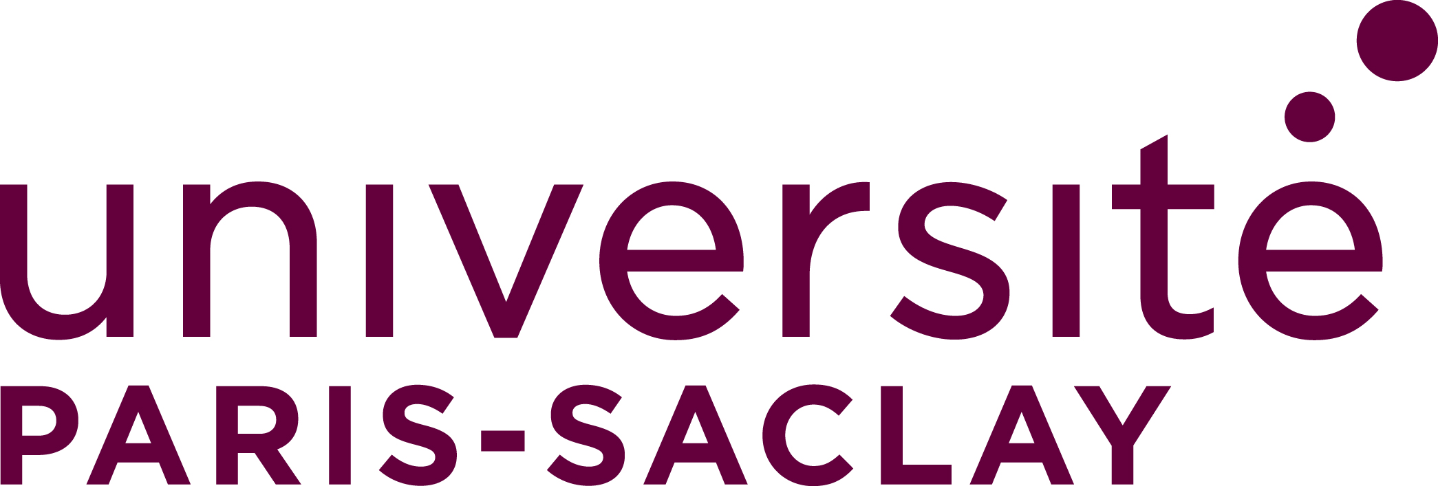 Paris-Saclay International Programs for Physical Sciences and their Interfaces