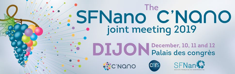 SFNano – C'Nano joint meeting 2019, 10-12 décembre